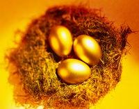 интернет заработок на яйцах несущая курица
